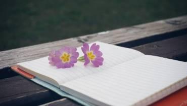 Era già Primavera – di Mariangela Ottonello